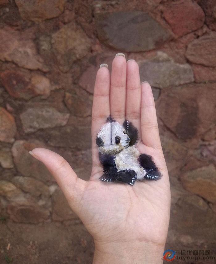 手掌上绘制3d图画,各种小动物在她手中栩栩如生